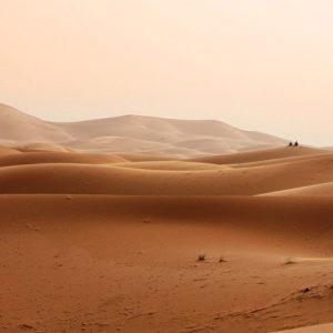 The desert of Sahara